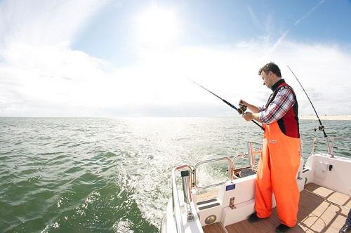 Garmin Fishfinder 300 C