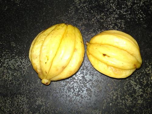 Garcinia Cambogia Diät zum schnellen Abnehmen