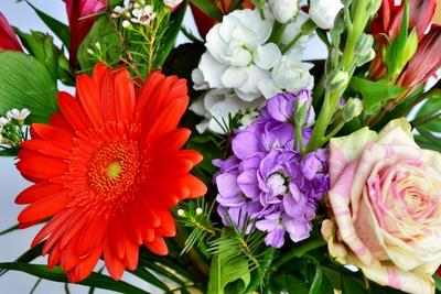 Blumen Geschenk